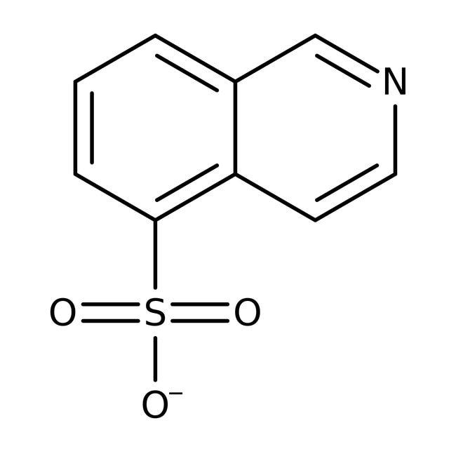 Isoquinoline-5-sulfonic Acid 96.0+%, TCI America™
