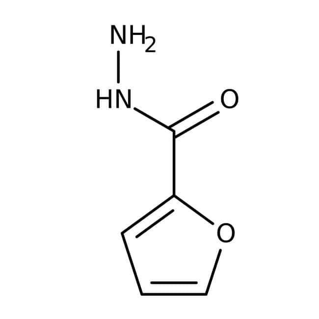 2-Furoic acid hydrazide, 98%, ACROS Organics™ 5g; Glass bottle 2-Furoic acid hydrazide, 98%, ACROS Organics™
