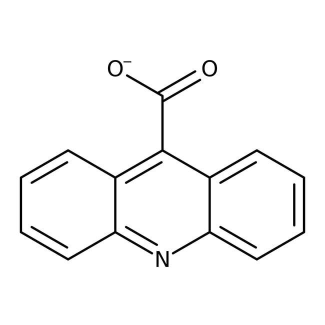 Acridine-9-carboxylic acid hydrate, 97%, ACROS Organics™ 5g Acridine-9-carboxylic acid hydrate, 97%, ACROS Organics™