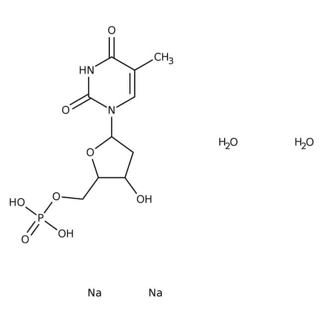 Alfa Aesar™Thymidin-5'-monophosphat Dinatriumsalz 250mg Alfa Aesar™Thymidin-5'-monophosphat Dinatriumsalz