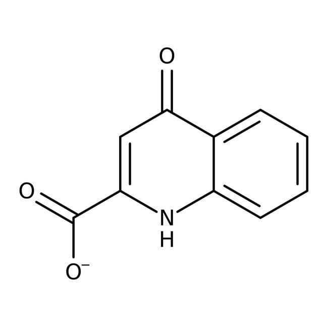 4-Hydroxyquinoline-2-carboxylic acid, hydrate, 98%, ACROS Organics™ 5g 4-Hydroxyquinoline-2-carboxylic acid, hydrate, 98%, ACROS Organics™