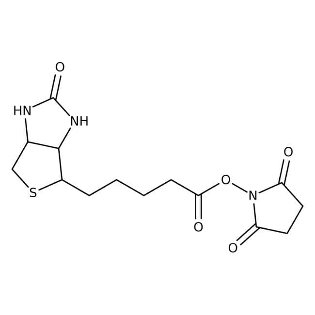 (+)-Biotin N-hydroxysuccinimide ester, 98%, ACROS Organics™