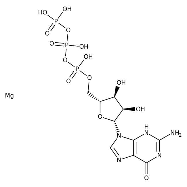 Guanosine-5'-Triphosphate Trisodium Salt 98-100%, MP Biomedicals™
