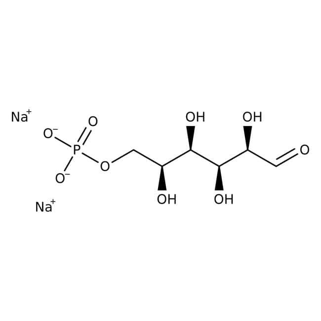 D-Glucose-6-phosphat, Dinatriumsalz-Hydrat, MP Biomedicals™ 25g D-Glucose-6-phosphat, Dinatriumsalz-Hydrat, MP Biomedicals™