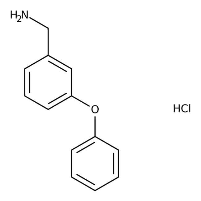 3-Phenoxybenzylamine hydrochloride, 97%, Maybridge™: Benzene and substituted derivatives Benzenoids
