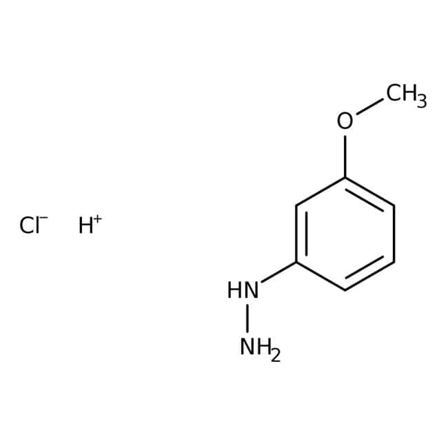 3-Methoxyphenylhydrazine hydrochloride, 98%, Thermo Scientific™: Aniline and substituted anilines Benzene and substituted derivatives