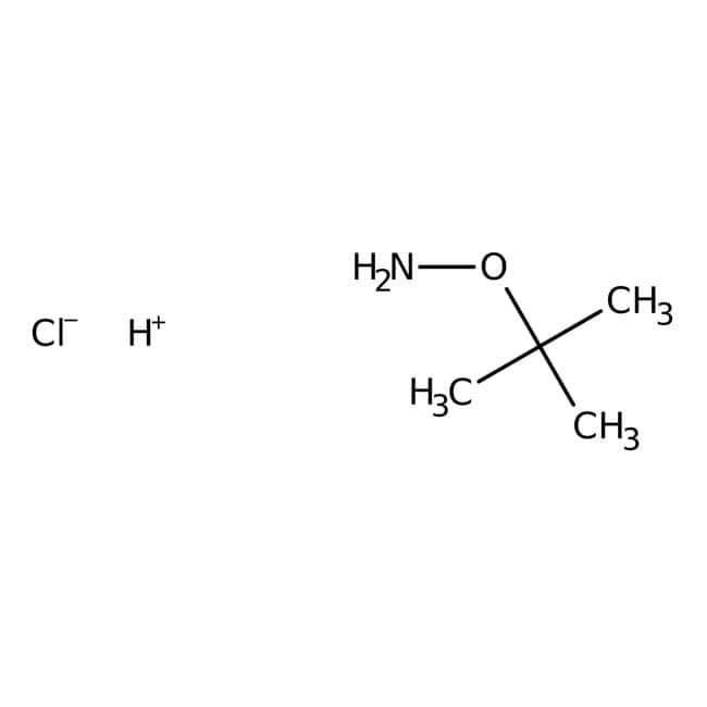 O-(tert-Butyl)hydroxylamine hydrochloride, 99%, ACROS Organics™ 1g, Glass bottle O-(tert-Butyl)hydroxylamine hydrochloride, 99%, ACROS Organics™