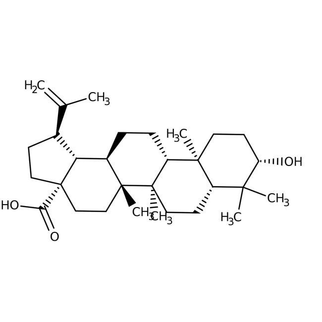 Betulinic Acid 97.0+%, TCI America™