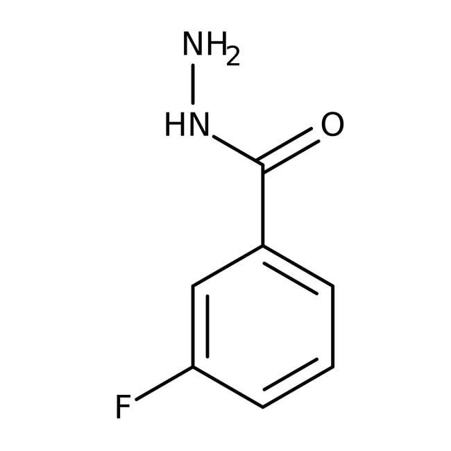 3-Fluorobenzoic hydrazide, 97%, ACROS Organics™