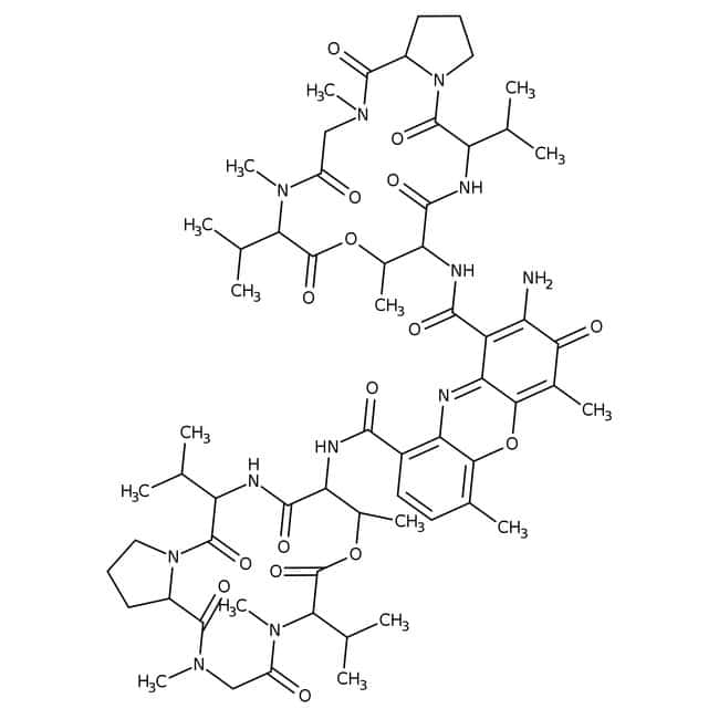 Actinomycin D, >99%, MP Biomedicals™