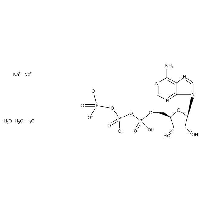 Adenosine-5'-Triphosphate Disodium Salt Hydrate MP Biomedicals 5g Adenosine-5'-Triphosphate Disodium Salt Hydrate MP Biomedicals