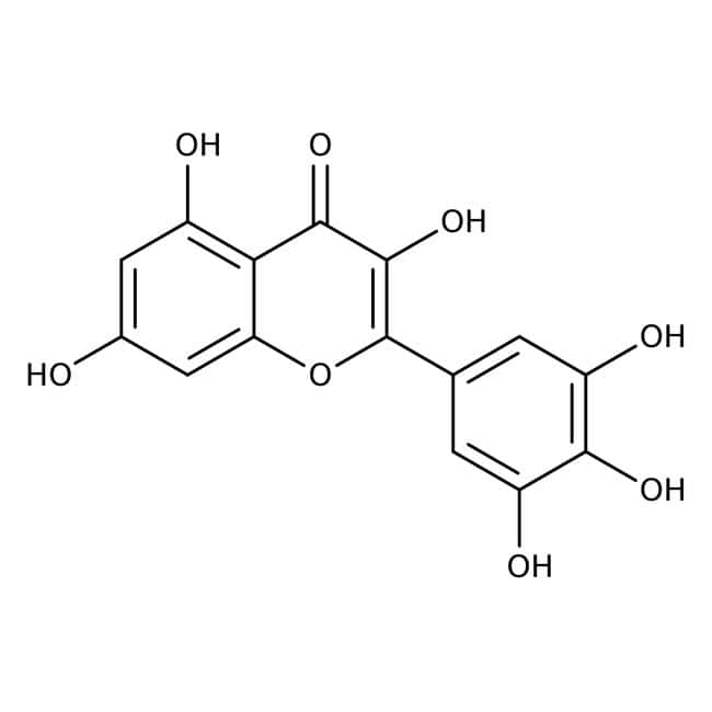 Myricetin 97.0 %, TCI America