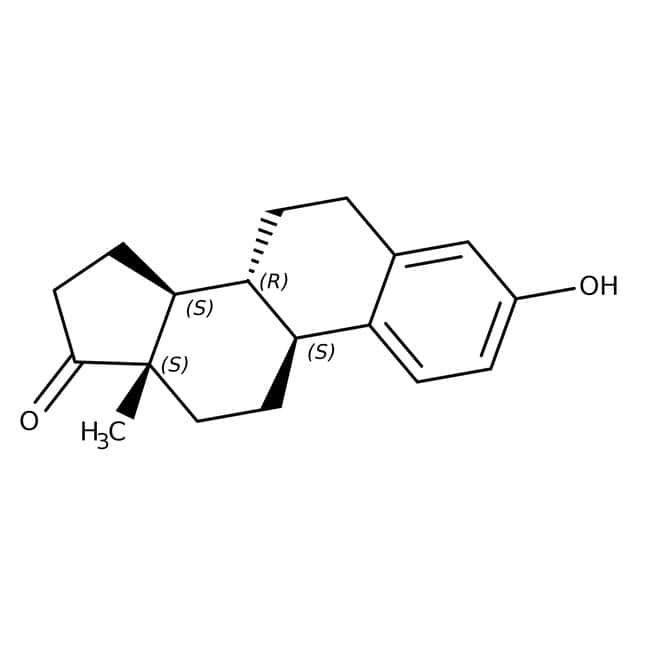 Estrone, 99+%, ACROS Organics™ 25g; Glass bottle Estrone, 99+%, ACROS Organics™