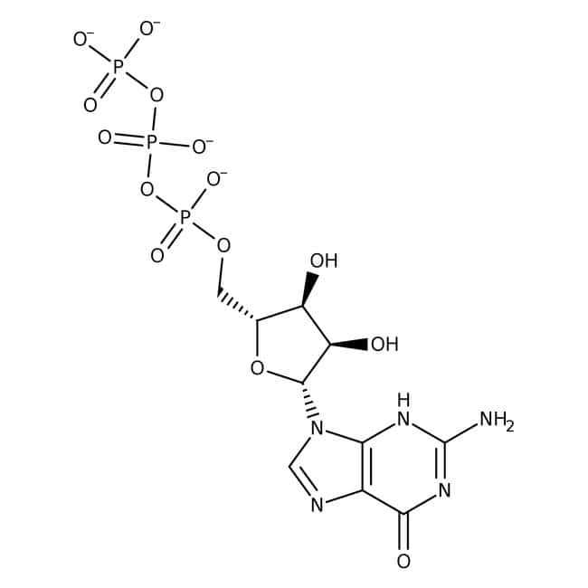 Guanosine-5'-triphosphate, disodium, 98.1%, MP Biomedicals™