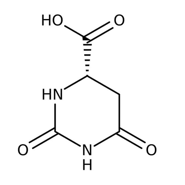L-Dihydroorotic acid, 99%, ACROS Organics™