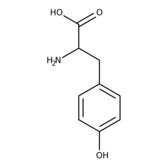 L-Tyrosine [Free Base], MP Biomedicals