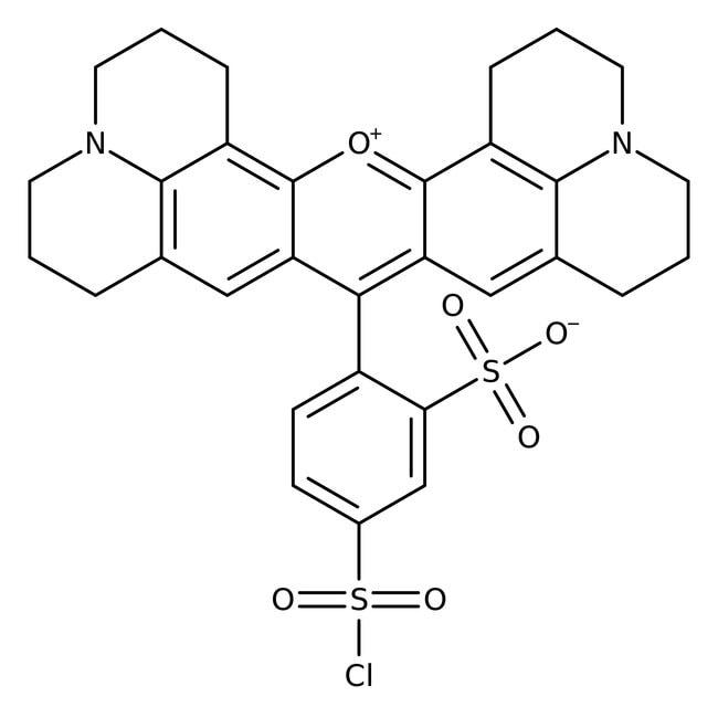 Sulforhodamine 101 (free acid), 99%, pure, laser grade, ACROS Organics™ 500mg Sulforhodamine 101 (free acid), 99%, pure, laser grade, ACROS Organics™