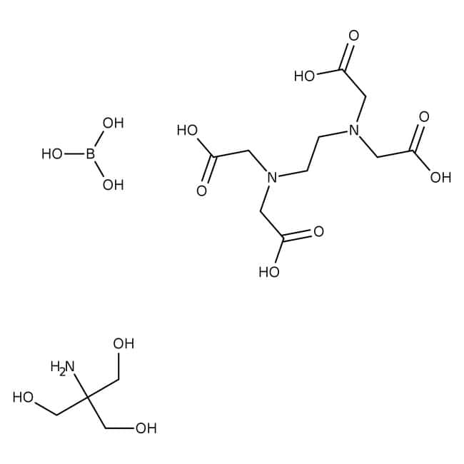 Tris-Borat-EDTA-Puffer, für Elektrophorese, (10-fache Konzentration), Fisher Chemical 10l, Beutel in Schachtel Tris-Borat-EDTA-Puffer, für Elektrophorese, (10-fache Konzentration), Fisher Chemical