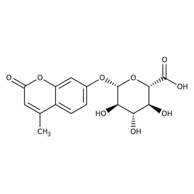 4-Methylumbelliferyl-β-D-glucuronide dihydrate, 98%, Acros Organics™: Sugar acids and derivatives Carbohydrates and carbohydrate conjugates