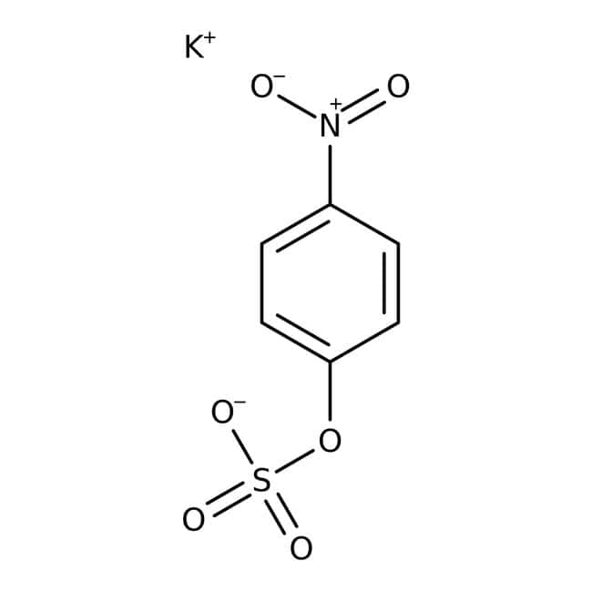 4-Nitrophenyl sulfate, potassium salt, 99+%, ACROS Organics™