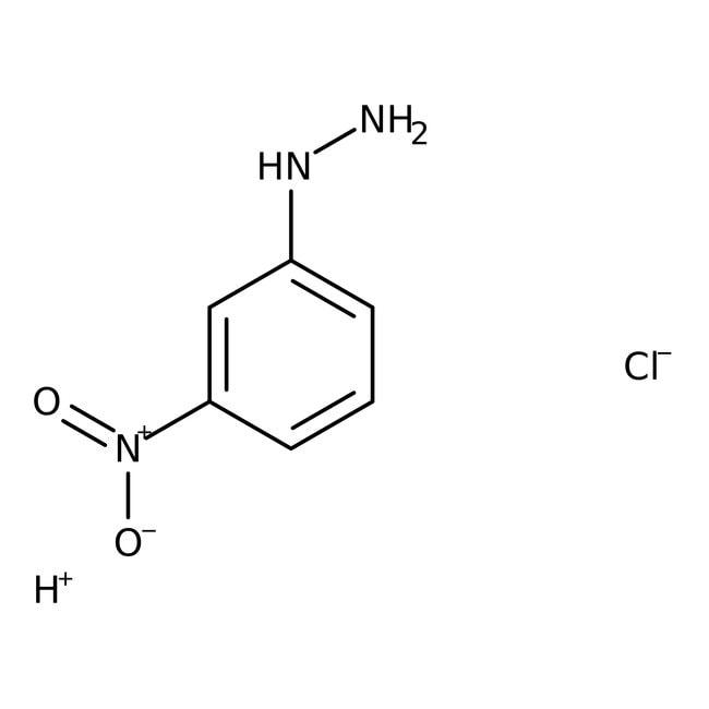 3-Nitrophenylhydrazine Hydrochloride 98.0 %, TCI America