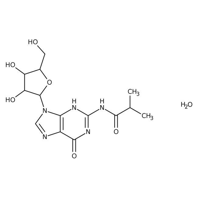 N2-Isobutyrylguanosine Monohydrate, TCI America™