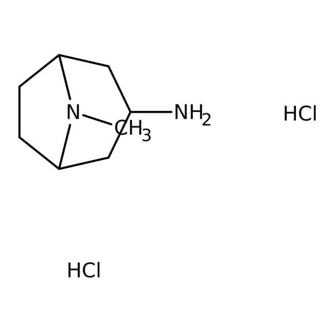 8-Methyl-8-azabicyclo[3.2.1]octan-3-amine dihydrochloride, 90%, Maybridge