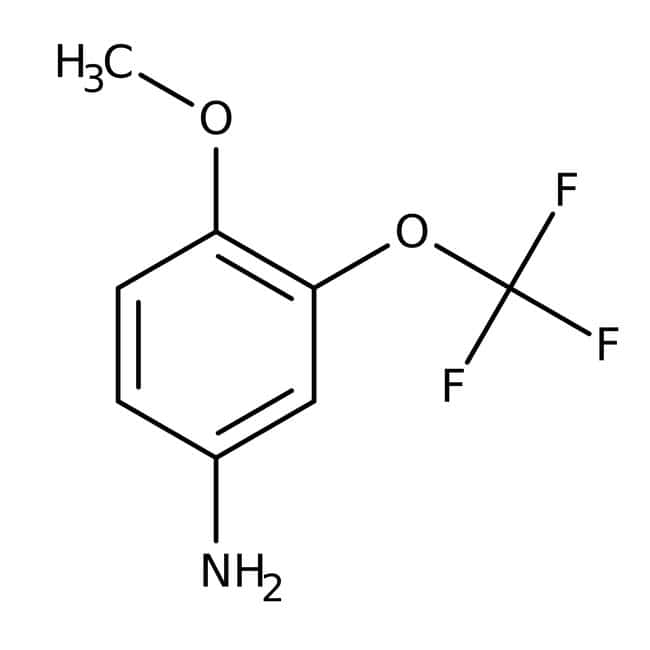 Alfa Aesar™ 4-Methoxy-3-(trifluoromethoxy)aniline, 97% 1 g Alfa Aesar™ 4-Methoxy-3-(trifluoromethoxy)aniline, 97%