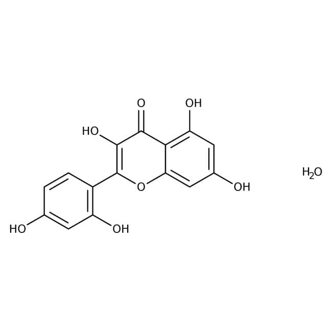 Morin Hydrate 90.0+%, TCI America™