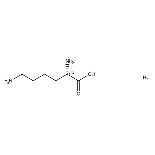L(+)-Lysine Monohydrochloride, ≥99%, ACROS Organics™ 100g; Plastic bottle L(+)-Lysine Monohydrochloride, ≥99%, ACROS Organics™