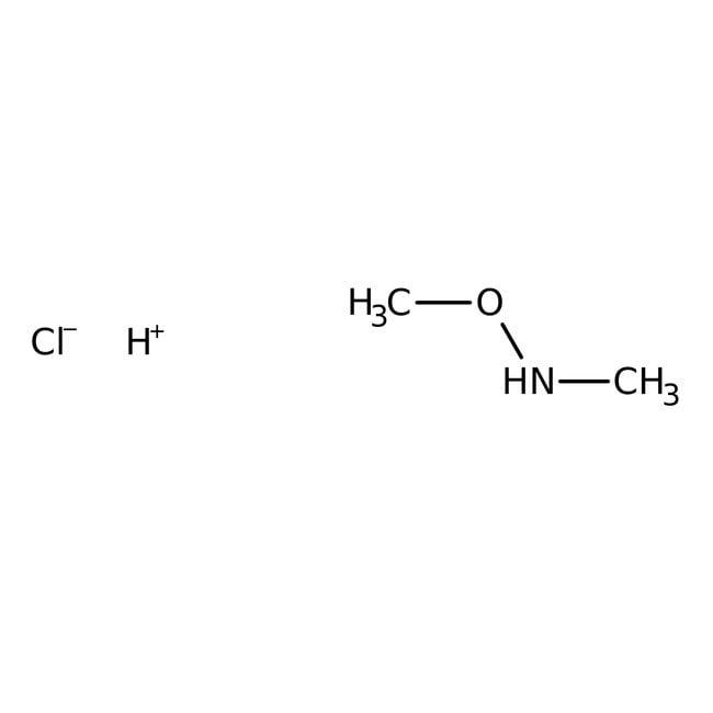 N,O-Dimethylhydroxylamine hydrochloride, 98%, ACROS Organics™