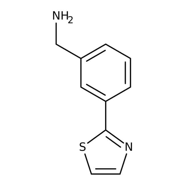 [3-(1,3-Thiazol-2-yl)phenyl]methylamine, 97%, Maybridge™ Amber Glass Bottle; 250mg [3-(1,3-Thiazol-2-yl)phenyl]methylamine, 97%, Maybridge™