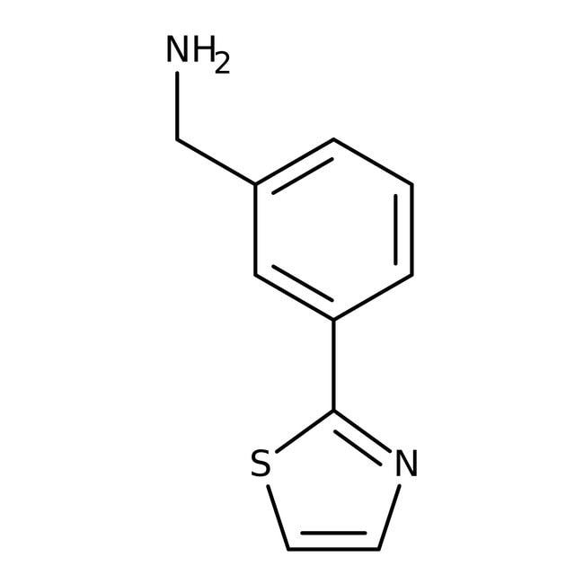 [3-(1,3-Thiazol-2-yl)phenyl]methylamine, 97%, Maybridge Amber Glass Bottle; 250mg [3-(1,3-Thiazol-2-yl)phenyl]methylamine, 97%, Maybridge