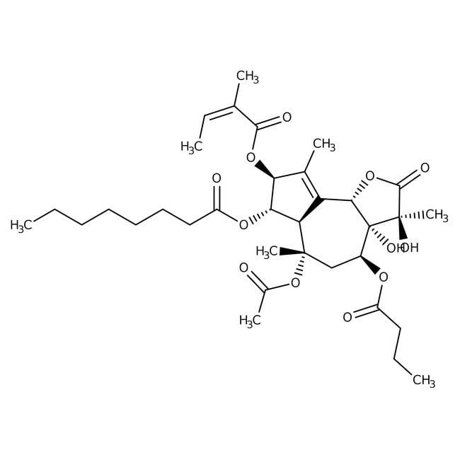 Thapsigargin, 99% (TLC), 97.6% (HPLC), MP Biomedicals™
