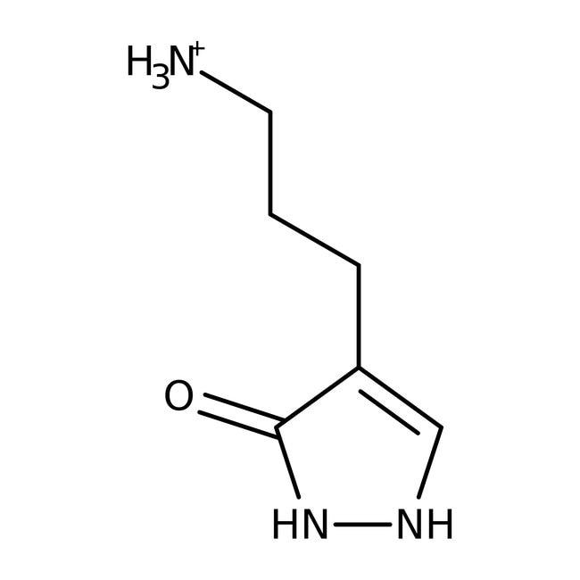 4-(3-Aminopropyl)-2,4-dihydro-3H-Pyrazol-3-one, ≥90%, Maybridge Braunglasflasche, 1g 4-(3-Aminopropyl)-2,4-dihydro-3H-Pyrazol-3-one, ≥90%, Maybridge