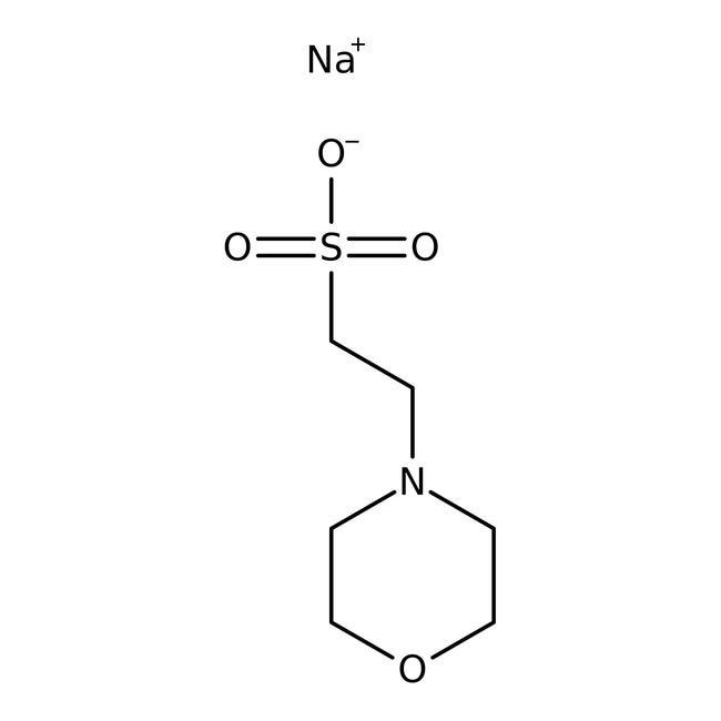 MES sodium salt, 99%, ACROS Organics™ 100g; Plastic bottle MES sodium salt, 99%, ACROS Organics™