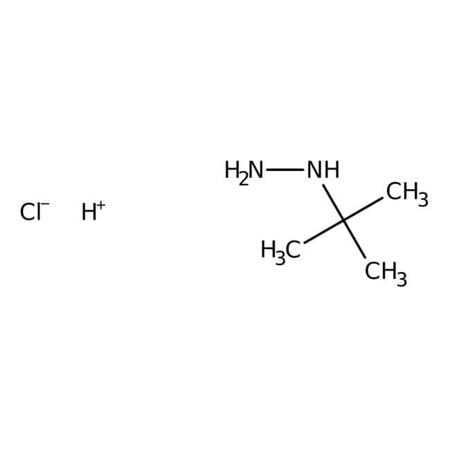 tert-Butylhydrazine hydrochloride, 98%, ACROS Organics™: Hydrazines and derivatives Organonitrogen compounds