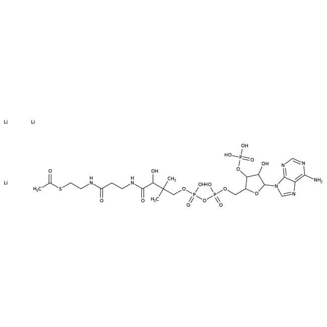 Acetyl Coenzyme A Trilithium salt Trihydrate, >92%, MP Biomedicals™