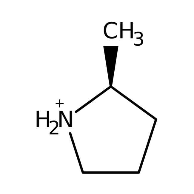 2-Methylpyrrolidine, 98%, ACROS Organics