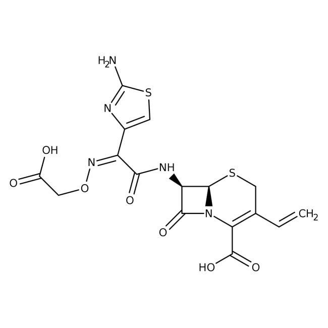 Cefixime, 98%, ACROS Organics™ 1g Cefixime, 98%, ACROS Organics™