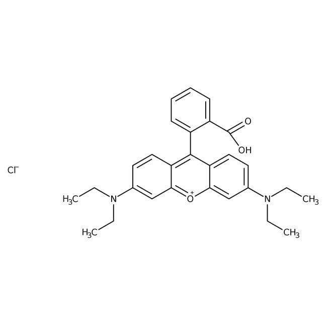 Rhodamine B, 98+%, ACROS Organics™ Glass bottle; 100g Rhodamine B, 98+%, ACROS Organics™