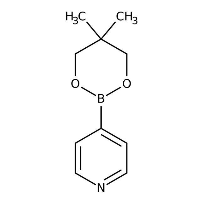 3-(5,5-Dimethyl-1,3,2-dioxaborinan-2-yl)pyridine, 97%, Maybridge™: Boronic acid derivatives Organic acids and derivatives