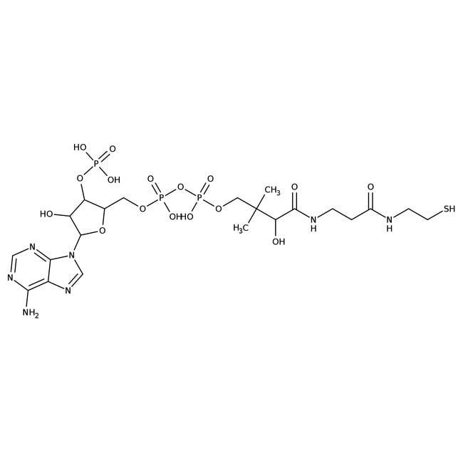 CoenzymA-Trihydrat, freie Säure, Affymetrix/USB™ Kunststoffflasche; 50mg Produkte