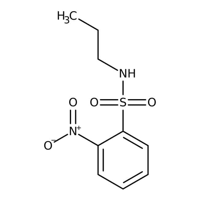 Alfa Aesar™2-Nitro-N-n-propylbenzenesulfonamide, 97% 1g Alfa Aesar™2-Nitro-N-n-propylbenzenesulfonamide, 97%