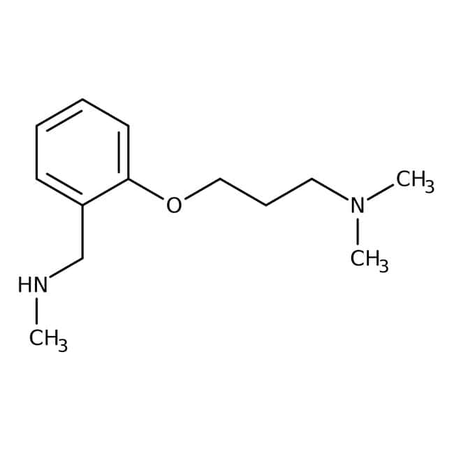 2-[3-(Dimethylamino)propoxy]-N-methylbenzylamine, ≥97%, Maybridge™ Amber Glass Bottle; 1g 2-[3-(Dimethylamino)propoxy]-N-methylbenzylamine, ≥97%, Maybridge™