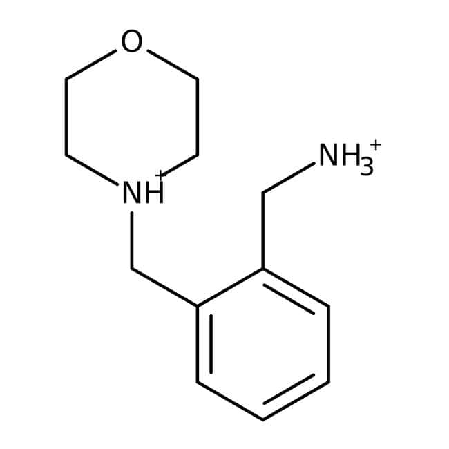 1-[2-(morpholin-4-ylmethyl)phenyl]methanamine, 97%, Maybridge Amber Glass Bottle; 1g 1-[2-(morpholin-4-ylmethyl)phenyl]methanamine, 97%, Maybridge