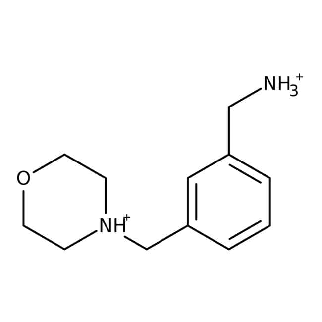 [3-(Morpholinomethyl)phenyl]methylamine, 97%, Maybridge™ Amber Glass Bottle; 250mg [3-(Morpholinomethyl)phenyl]methylamine, 97%, Maybridge™