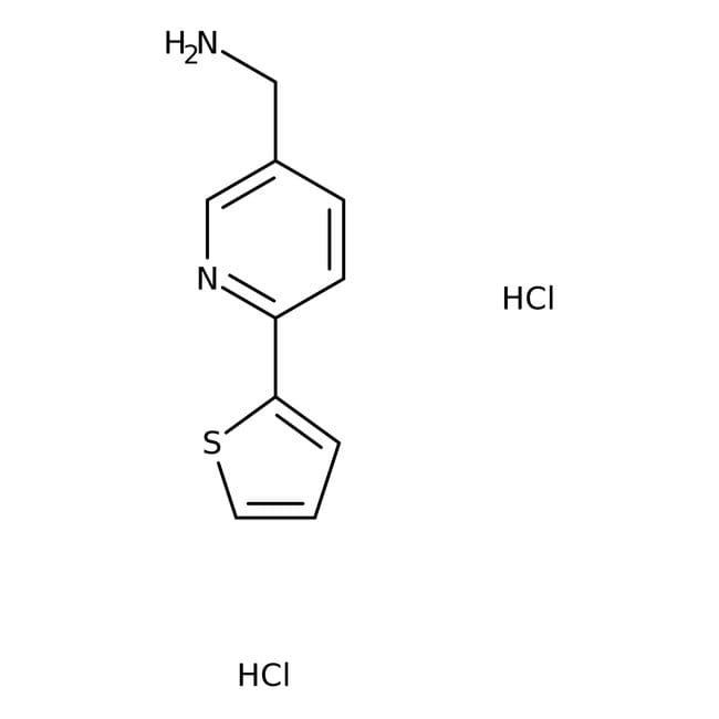 (6-Thien-2-ylpyridin-3-yl)methylamine dihydrochloride, 90%, Maybridge Amber Glass Bottle; 250mg (6-Thien-2-ylpyridin-3-yl)methylamine dihydrochloride, 90%, Maybridge
