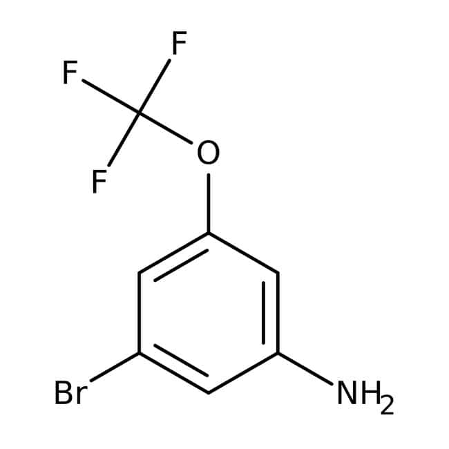 Alfa Aesar™ 3-Brom-5-(Trifluormethoxy)anilin, 97 % 1 g Alfa Aesar™ 3-Brom-5-(Trifluormethoxy)anilin, 97 %