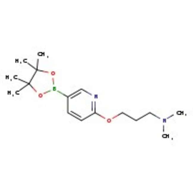 6-[3-(Dimethylamino)propoxy]pyridine-3-boronic acid pinacol ester, 97%, ACROS Organics™